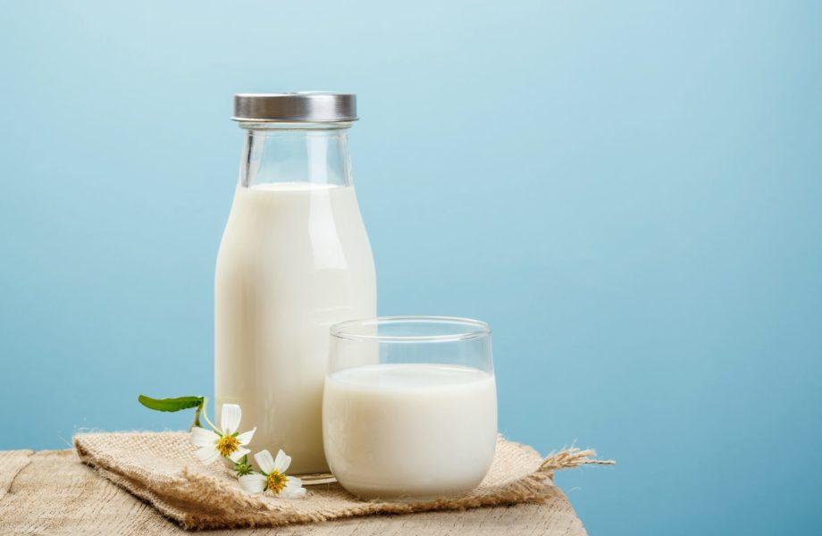как молочные продукты влияют на тело